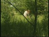 מאוננת לבד בחורשה על דשא