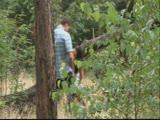 מזיין אותה ביער מדהים בכל תנוחה אפשרית